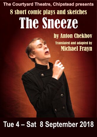 The Sneeze - Website_preview (1)